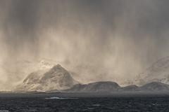 snowstorm (zora_schaf) Tags: polarmeer schneesturm lofoten zoraschaf snowstorm