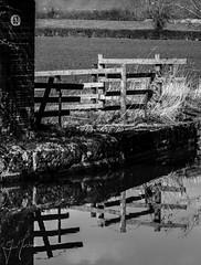 No 63 (iainmerchant) Tags: art artoflife foxtonlocks iainmerchant photography theartoflife thinkingoutloud thoughtprovoking panasonic picoftheday photooftheday places leicestershire landscape leicestershireuk landscapes lumix gx8 midlands mirrorless bw monochrome water waterscapes waterscape reflections reflection reflect reflected