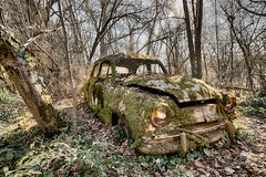 Entropy... (ElfeMarie) Tags: simca voiture car vegetation forest foret marilynek artmajeur art entropie entropy canon 70d sigma 1020mm hdr abandonné abandoned abandonnée creepy colors couleurs decay derelict decayed décrepit dust exploration explorationurbaine extérieur forgotten france glow green imagination lost light lumière lueur luminescence nature oublié oubliée old oldtimer past poussiere peaceful ruine ruins ruines rusty rouille sunlight urbex