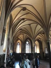 IMG_6015 (Andy961) Tags: polska poland malbork marienburg castle interior vault vaulting arch ceiling gothic architecture unesco worldheritage