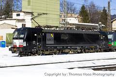 TX Logistik (MRCE), 193 671-5 (Thomas Naas Photography) Tags: österreich austria eisenbahn railways zug züge train lokomotiven lokomotives fahrzeuge outdoor kufstein siemens vectron ms x4e txl tx logistik mrce mitsui rail capital europe gmbh dispolok