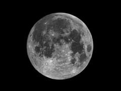 Super Full Moon February 19, 2019 (Brian E Kushner) Tags: january 2018 january2018 january12018 super full fullmoon astronomy astrophotography newjersey audubon nikond850 d850 nikon nikonafsnikkor800mmf56efledvrlens afs nikkor 800mm f56e fl ed vr lens tc14eiii tc14