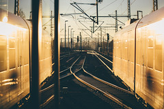 Train Reflections (freyavev) Tags: train sbahn traintracks trainstation sunset golden goldensunset renningen germany deutschland badenwürttemberg vsco telelens outdoor urban canon canon700d