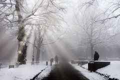 Le Mont Sainte Odile (thierrybalint) Tags: tree road snow mist mont mountain nikon nikoniste balint thierrybalint steodile