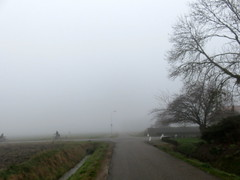 's Heerenhoek (Omroep Zeeland) Tags: fietsers de mist