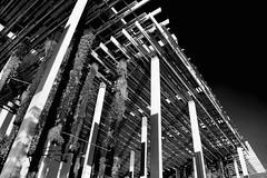 Pérez Art Museum Miami, 1103 Biscayne Boulevard, Miami, Florida, USA / Architect: Herzog and de Meuron / Completed: 2013 (Photographer South Florida) Tags: miami florida usa miamibeach miamigardens northmiamibeach northmiami miamishores cityscape city urban downtown density skyline skyscraper building highrise architecture centralbusinessdistrict miamidadecounty southflorida biscaynebay cosmopolitan metropolis metropolitan metro commercialproperty sunshinestate realestate tallbuilding midtownmiami commercialdistrict commercialoffice wynwoodedgewater residentialcondominium dodgeisland brickellkey southbeach portmiami sobe brickellfinancialdistrict keybiscayne artdeco museumpark brickell historicalsite miamiriver brickellavenuebridge midtown sunnyislesbeach moonovermiami mimo venetiancauseway pérezartmuseummiami 1103biscayneboulevard herzoganddemeuron completed2013
