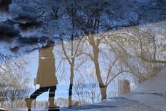 Walking into Spring (Alex L'aventurier,) Tags: montreal montréal quebec québec canada reflet reflection street rue bleu blue arbre trees silhouette urbain urban personne person people flaque puddle snow neige