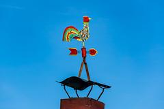 Wetterhahn auf dem Bootsverleih am Dechsendorfer Weiher 2727 (Peter Goll thx for +11.000.000 views) Tags: erlangen 2019 natur dechsendorf bayern deutschland de dechsendorferweiher wetterhahn sky himmel blau franken