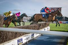 DSC_0622 (fullerton42) Tags: straftford racecourse stratfordracecourse horse horses racehorse horseracing race punter punters specatators sport equine england