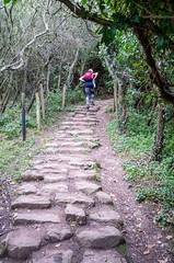 The Fairy Steps climb (daveseargeant) Tags: whitby cinder track cleveland way north yorkshire walking leica x typ 113 sea seaside coast
