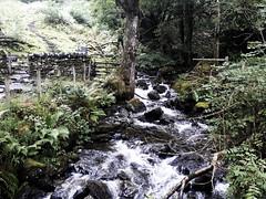 Cadair Idris (will668) Tags: cadairidris penygadair dolgellau wales mountain climbing hills water waterfall river rocks trees tree