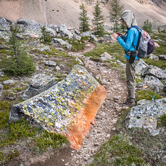 Colourful Rock on Wenkchemna Trail (Colin Campbell Photography) Tags: wenkchemnapass lakelouise morainelake eiffellake