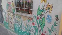 Pareti fiorite (patrizia.montebelli) Tags: murale