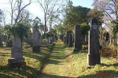 IMG_8321 (Pfluegl) Tags: wien vienna zentralfriedhof graveyard europe eu europa österreich austria chpfluegl chpflügl christian pflügl pfluegl spring frühling simmering