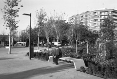 190104_Parc_Central_031 (Stefano Sbaccanti) Tags: bw blackandwhite bn parccentral valencia minox35gl kentmere400 bellinihydrofen analogicait analogue analogico argentique spain spagna selfdeveloped 2019 city