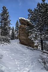 Big Bolder (noname_clark) Tags: rockymountainnationalpark outdoor hike snow lillymountain boulder trail rock