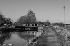 IMGP9334 (Brian H Whittle) Tags: blackwhite leedsliverpoolcanal rufford canal