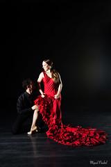 Carmen by Mérimée (flamencoagency) Tags: flamenco dance baile bailaores singer music spain seville andalusia travel culture tradition entertainment carmen mérimée ballet opera choreographer classical flamencoballet