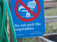 Forbidden Veggies! . (Irene, Montreal, QC) Tags: forbiddenveggies gardens gardenscenes localgarden garden plants plant notice gardenhose outdoors outdoorscenes signs warningsigns gardensigns westvancouverbc 1001nights 1001nightsmagiccity 1001nightsmagicwindow