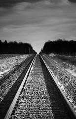 Mono RR (Dan Haug) Tags: rr railroad mono monochrome vanishingpoint tracks blackandwhite christmas turkey view vars ontario december 2018 xt3 fujifilm fujixseries xf100400mmf4556rlmoiswr xf100400mm