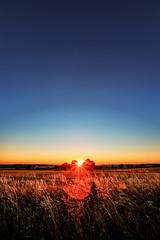 Last Summer (M-Z-Photo) Tags: colmberg bayern deutschland de sonnenuntergang felder abendstimmung abendrot gras bäume abend hdr himmel blau