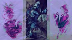 (K)AnalArt_56a (wos---art) Tags: bildschichten kanal art three communication kommunikation flowers blumen tulpen rosen farbkomposition sakrale räume
