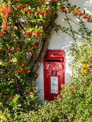 Post Box (Matthew_Hartley) Tags: postbox berries autumn fall ribblevalley lancashire northwest england uk sony a7 iii a7iii fullframe 2870 2870mm