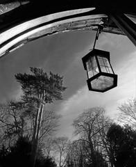 Gothic arch (Dun.can) Tags: stmarythevirgin church gothic arch blackwhite bottesford leicestershire trees lantern monochrome