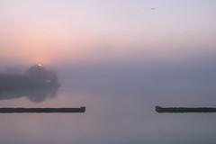 Gates of Dawn (johnkaysleftleg) Tags: hurworthburnreservoir countydurham sunrise misty still england northeast canon760d sigmaaf1770mmf2845dcmacro minimalism