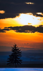 Sunset Over Montana (Ray Mines Photography) Tags: sunset glow orange breathtaking beautiful scenic cold winter montana outdoors nature landscape evening colorful snow