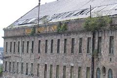 Wallace Craigie Works Dundee 2016 (15) (Royan@Flickr) Tags: 201605 wallace craigie works dundee william halley sons blackcroft landmark jute mill factory buildind demolished history 2016