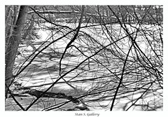 February - Another view of the pond frozen over (Stan S. Gallery) Tags: february ice trees vines branches snow pond winter cold frozen shadows shadowplay light canonrebel landscape blackandwhite monochrome shore woods forest