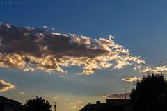 Sunset light (TMStorari) Tags: sky clouds sunset skies cielo nuvole luce light lights sunsetlight himmel cloud shadow shadows bluesky tramonto tramonti atmosphere lodi italia italy lombardia lombardy italien luci evening eveninglight abend abendslicht colori colours
