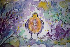 bird on the  branch (mariola aga) Tags: watercolor painting bird branch flower mywork art
