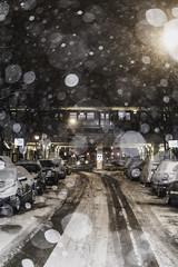 North and cold (aerojad) Tags: eos canon 80d dslr 2019 chicago urban snow snowing winter february bokeh snowkeh outdoors city cta train traintracks night nightphotography nightscape winterscape snowscape