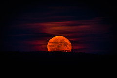 Mondaufgang über dem Pfälzer Wald (Nature_77) Tags: moon fullmoon landscape nature nobloodmoon pfälzerwald palatinateforest clouds sky himmel landschaft night nightshot moonrise mondaufgang rheinlandpfalz rhinelandpalatinate erdtrabant