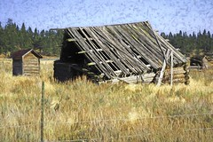 Brush Strokes (Eclectic Jack) Tags: eastern oregon trip october 2018 rural agriculture farm farming autumn fall abandoned ghost town house structure home whitney software labs topaz forrest national wallowa