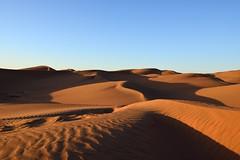 Sahara immensity (Jean-Marc Vacher) Tags: morocco sand dunes sable sahara maroc desert désert immense immensity sunrise leverdesoleil mhamidelghizlane