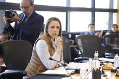 Fabiola Loya (DipCiudadanoMx) Tags: movimiento ciudadano diputadosciudadanos fabiola loya