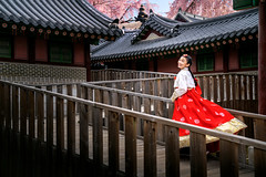 Korean lady in hanbok dress runing  in an ancient palace (anekphoto) Tags: travel lady old asian asia korea seoul south korean walk hanbok city palace wood dress girl beautiful red people outdoor gyeongbokgung young art ginkgo leaf woman portrait pretty smile traditional street tradition costume wear ancient town beauty person cute attractive colorful dressed culture nature cherry pink flower blossom run temple