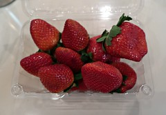 Saturday Night Colours - Winter Strawberries (Pushapoze (MASA)) Tags: strawberries huge fruit fraises fragole fresas