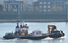 Emilia D + Device (6) @ Gallions Reach 14-02-19 (AJBC_1) Tags: riverthames gallionsreach boat ship vessel northwoolwich newham londonboroughofnewham eastlondon london england unitedkingdom greatbritain uk gb nikond3200 ajbc1 ©ajc dlrblog multipurposevessel multicat emiliad thamescraftdrydockingservicesltd workboat device