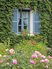 Giverny WIndow (dckellyphoto) Tags: giverny france 2013 normandy flowers normandie eure europe window ivy plants plant blue shutters