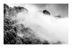 Croix du nivolet (Mathieu Rougnon) Tags: tree arbres sky ciel montagne alpes france mountain noirblanc blackwhite clouds nuages fôrets forest d800 nikon chambéry croixnivolet lacdubourget aixlesbains savoie hautesavoie