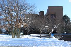 Snow Photos-4