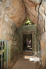 Angkor_Ta Prohm_2014_35