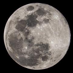 Super Worm Equinox Moon (SCSQ4) Tags: astronomy astrophotography california fullmoon fullwormmoon home longbeach night superwormequinoxmoon supermoon
