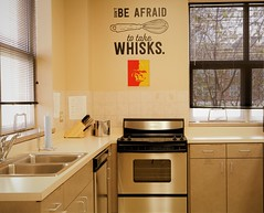 Combs_FCS_Architecture5 (trazanacombs) Tags: pittsburg state university gorillas kansas fcs family consumer science kitchen stove whisk cook sink appliance