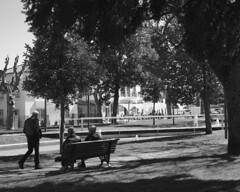Of social indifference - The Invisible (lebre.jaime) Tags: portugal beira covilhã people street streetphotography garden homeless passerby bench tree nikon d600 retinaxenar5028 digital fullframe fx blackwhite pb pretobranco noiretblanc ptbw