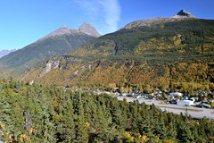 Changing of Fall - 005. (i threw a guitar at him.) Tags: mountains mountain skagway alaska 2018 fall autumn changing leaves view point town city village houses buildings borough height tree yellow side landscape beautiful season blue sky nikon d3100